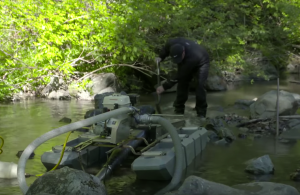 A recreational suction dredge mining operations in a Washington stream